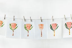 Orange Flower Prints