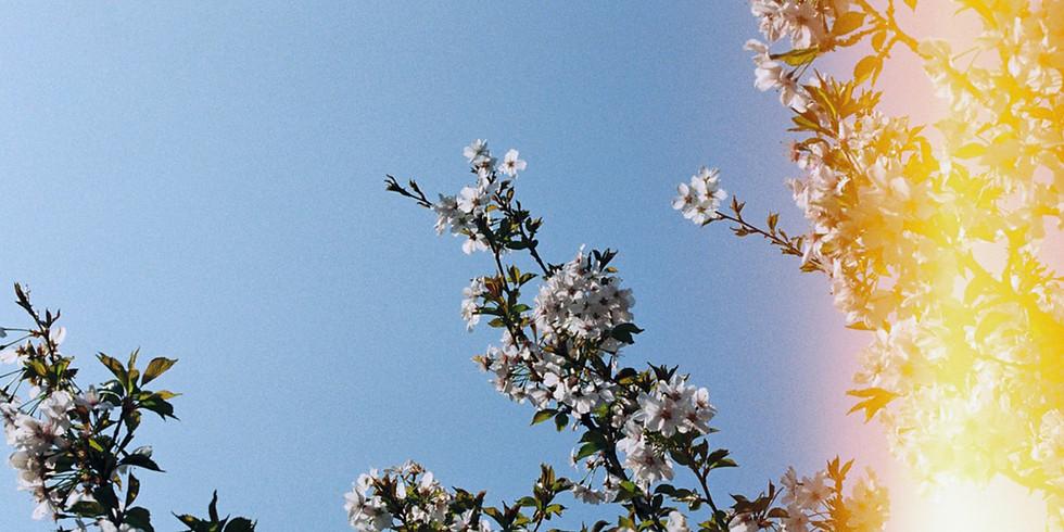 Préparez le printemps naturellement