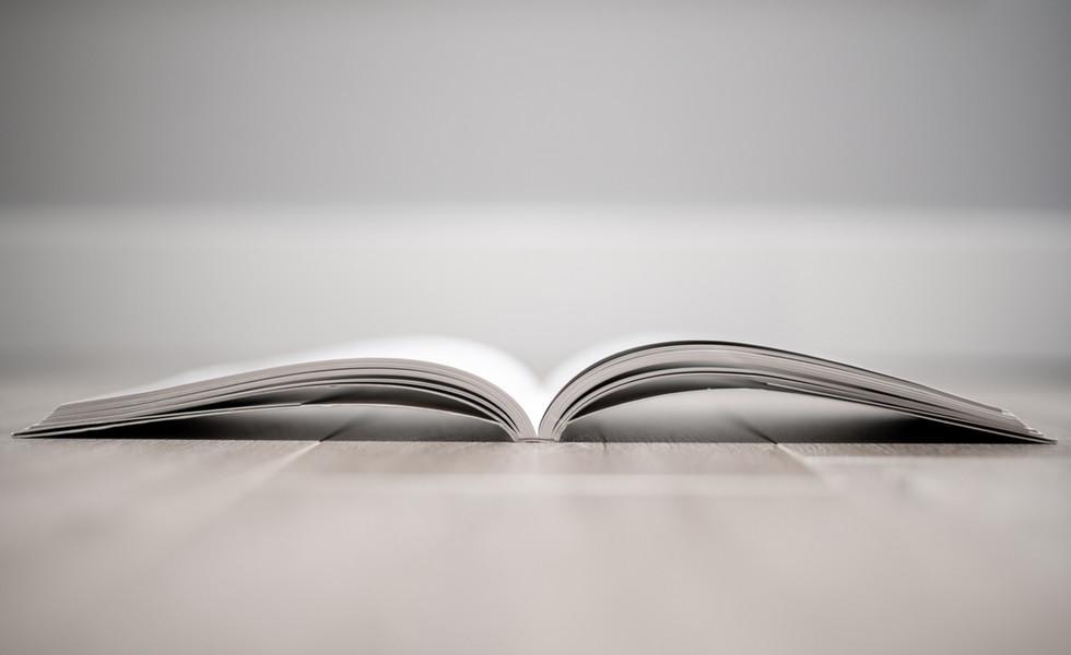 Projekt Book
