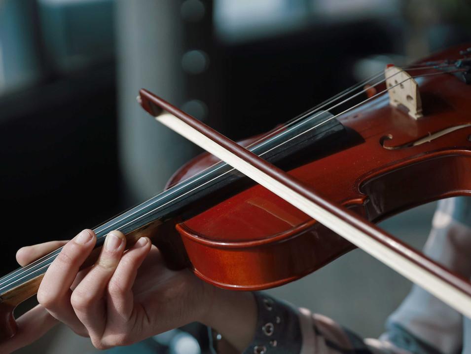 Violin & Fiddle