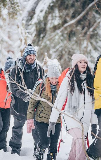 Hike Through Snowy Forest