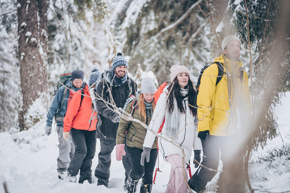 Vandra genom snöig skog