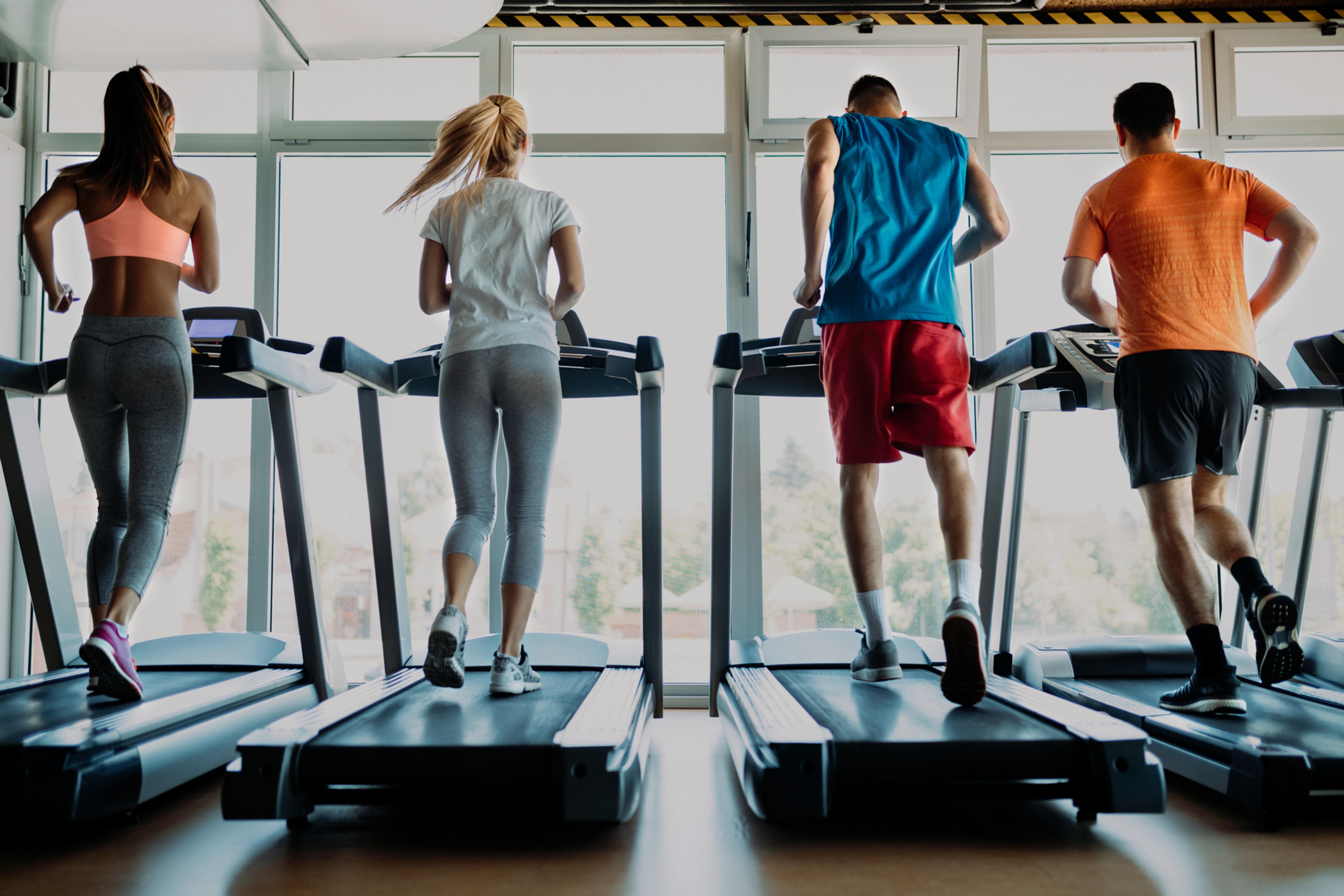 Fitness Coach Consultation