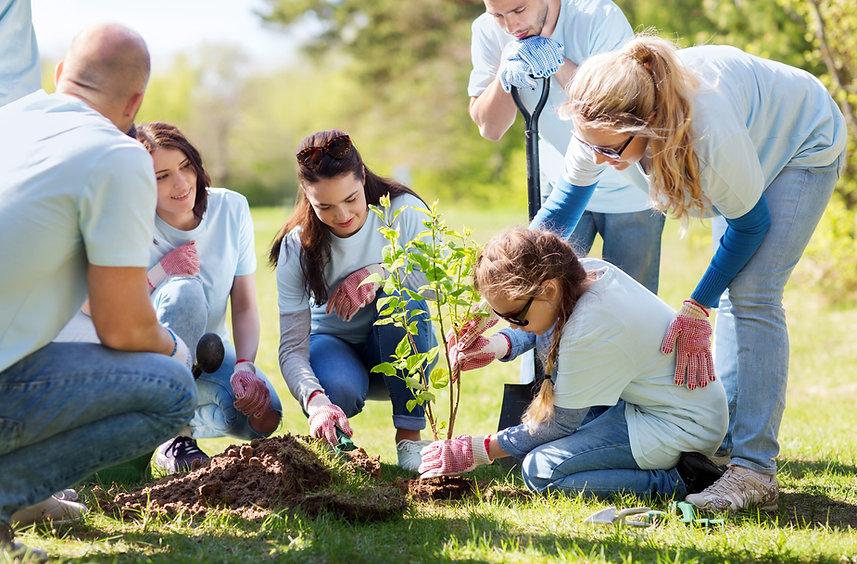 Eventio Groupin palvelut järjestöille ja lajiliitoille