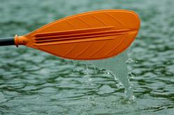 Kayak Paddle