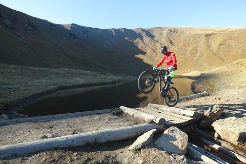 Cyclist Performs a Wheelie