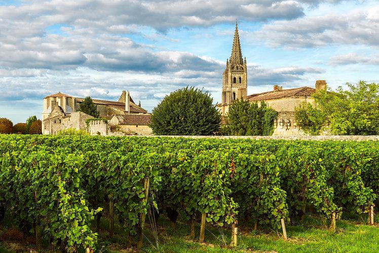 Vignoble devant une église