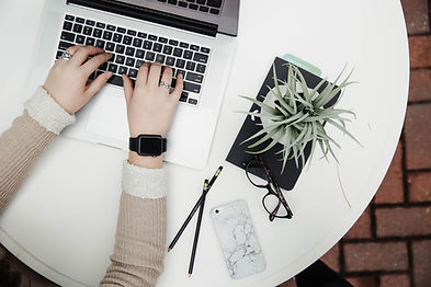 Laptop en plant