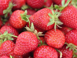 Strawberry Shortage