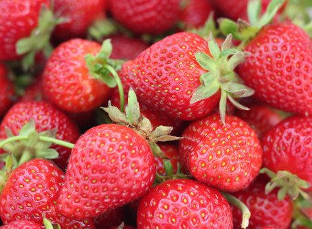 Fruit of the Week: Strawberries