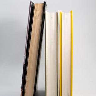 Click to View Author Website