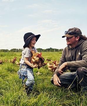 Père et fils dans la ferme de poulet