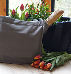 Tulips and a Baguette
