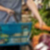 Légumes dans un panier de courses