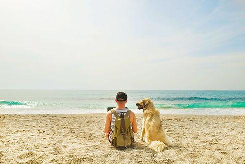 犬と一緒にビーチで