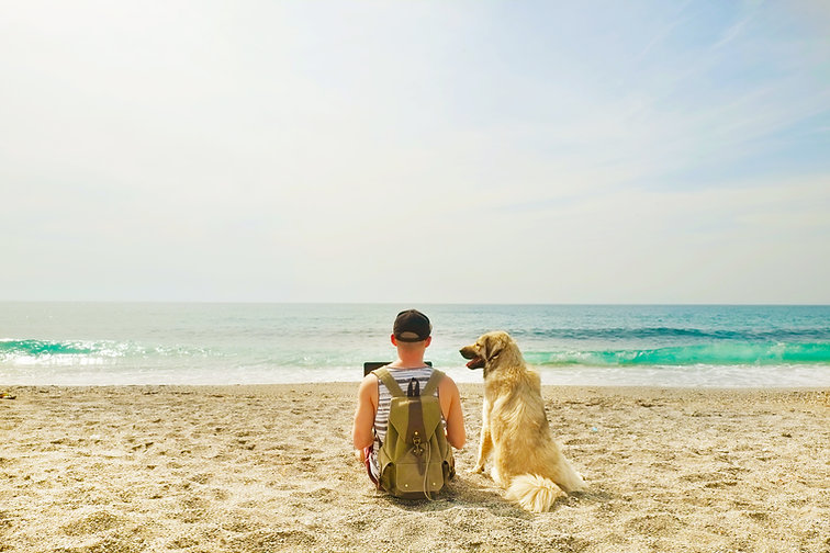 En la playa con perro