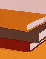 Haufen Bücher