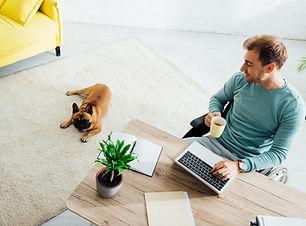 Travail de la maison avec un chien
