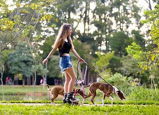 Rollerblader mit Hunden