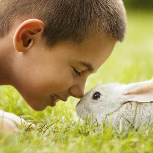 Cute Boy with Rabbit