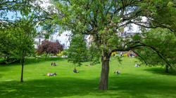 Presenza di parchi e aree verdi nelle vicinanze