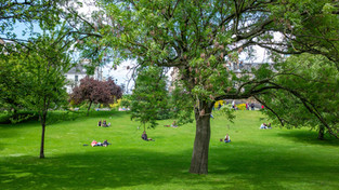Fun Things to do at the Park with Friends & Family