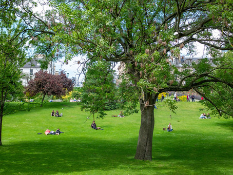 Going Places: The best remedy to city chaos can come in the form of green grass.
