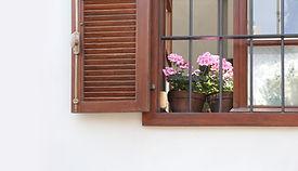 Geranium on Windowsill