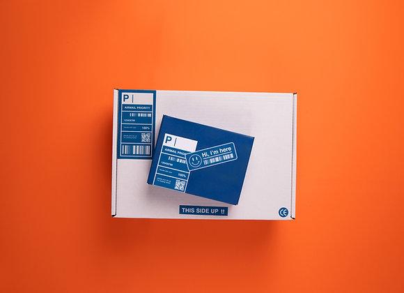 Quick Start II (Logo, Call Card, Letterhead)