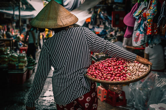 Vietnam: A Voyage from North to South