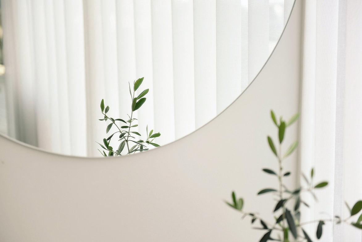 Réflexion de miroir de plante