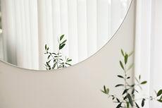 Reflejo de espejo de planta