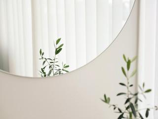 植物鏡面反射