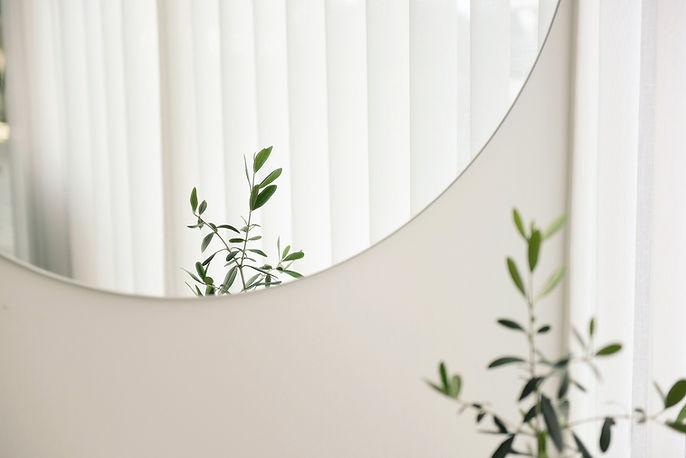 Reflexão de espelho de planta