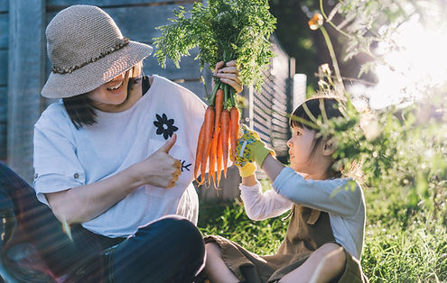 Joy of Harvest