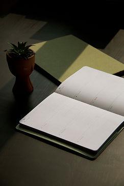 Diários de papel