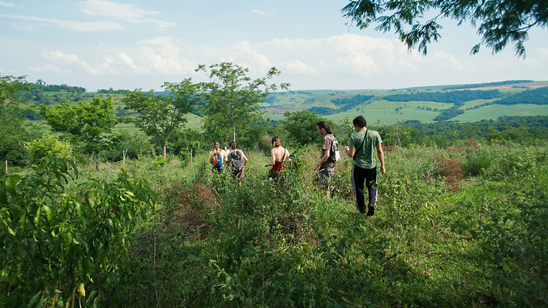 Atelier enfants, découverte des plantes sauvages de Corse 16h