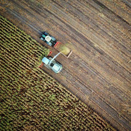 DJI Drones and Farming: 6 Ways DJI Is Revolutionizing Farming