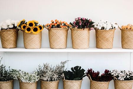 En Floristeria La Alqueria de Valerncia disponemos de gran variedad de flores frescas para realizar su pedido de ramos y arreglos florales que realize en nuestra web y poder servirlas a los domicilios de valencia y ciudades cercanas.