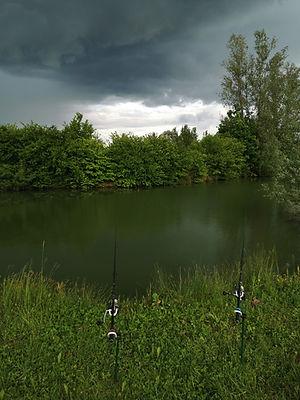 Pêche dans la nature