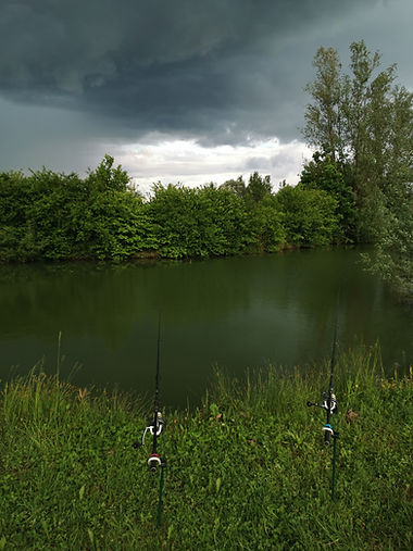 Fishing in Nature