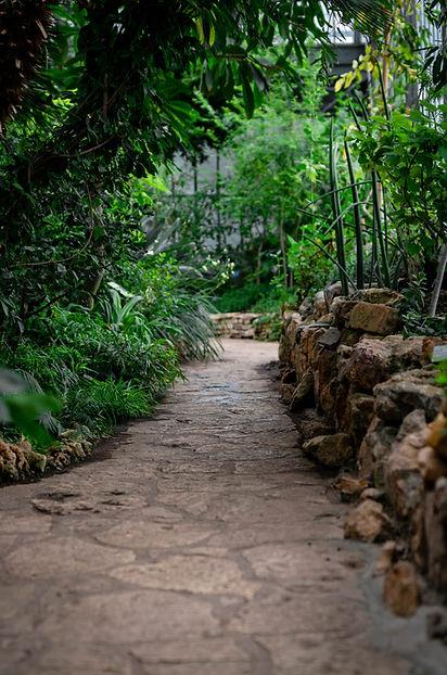 Passarela jardim