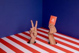 Hands Voting