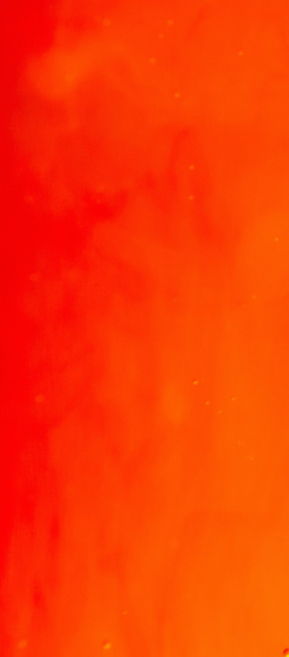 Red and Orange Gradient