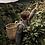 Thumbnail: Costa Rica   Limonal
