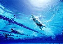 Nadadores fêmeas