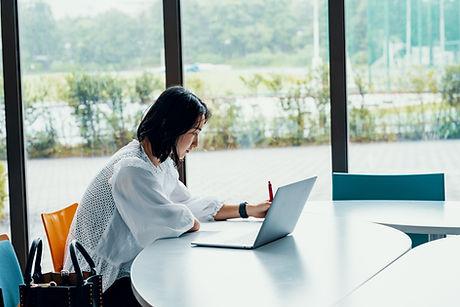 Laptop Office Worker