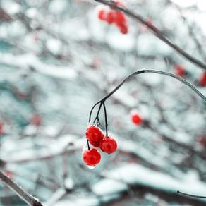 6 clés pour affronter l'hiver sereinement