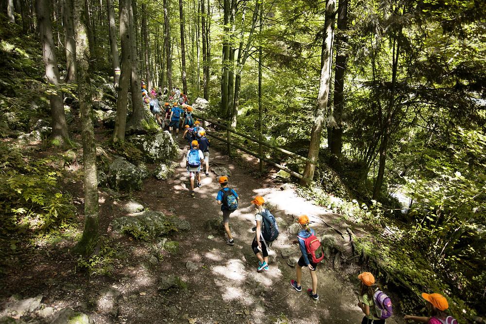 parc d'attraction grimp in forest quoi faire cet été sur Briancon que faire sur Serre chevalier activités enfants