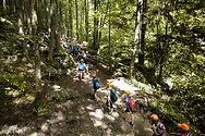 Klassenfahrt im Wald